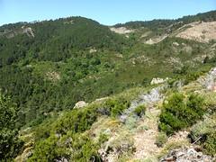 Le hameau supérieur des bergeries de Vitellile