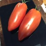 opalka tomato
