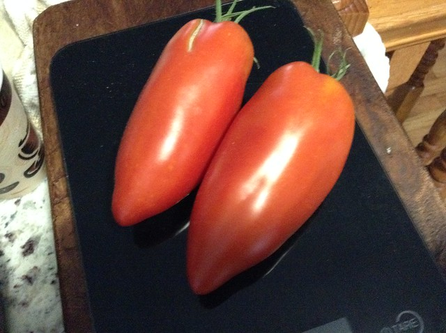 2 individual opalka tomatoes weighing 0.56 lb