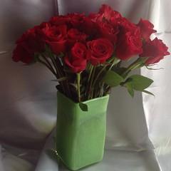 Reddest roses. #flowers #redroses