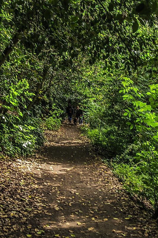 dean village walk 09