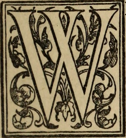 Image from page 52 of