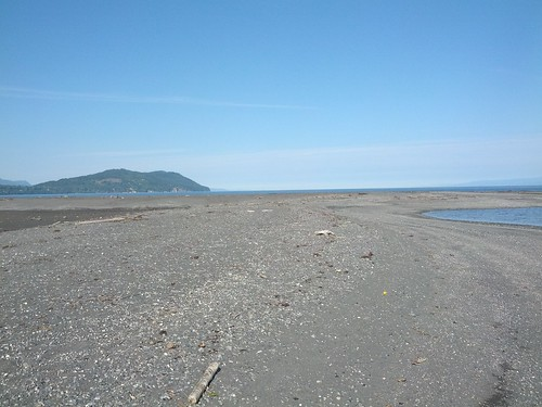 A large beach has formed at the mouth of the Elwha River. Credit: Anne Shaffer, Coastal Watershed Institute