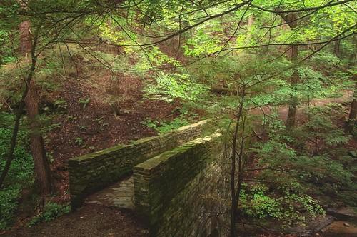 trees newyork nature photoshop us unitedstates union bridges upstatenewyork centralnewyork newyorkstate hdr endicott ibmglen nikcollection
