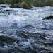 Oregon-Summer-2014-140815004.jpg