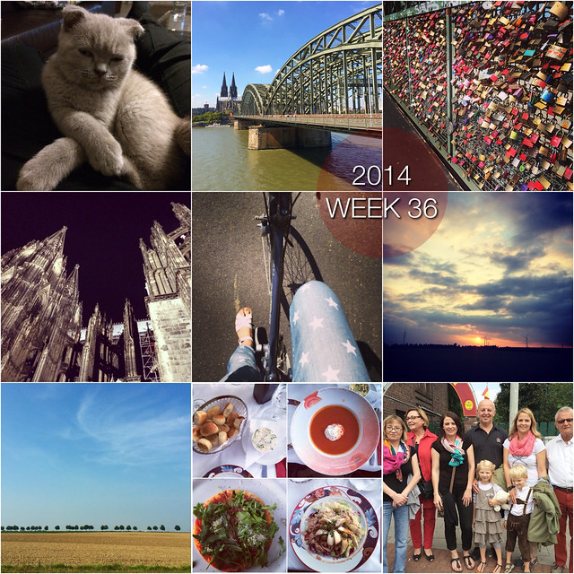 2014 in pictures: week 36