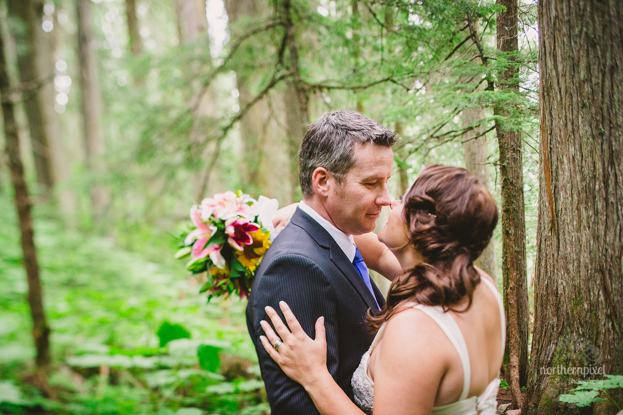 Ancient Forest After Wedding Session