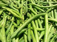 pea(0.0), serrano pepper(0.0), plant(0.0), snap pea(0.0), bird's eye chili(0.0), fruit(0.0), crop(0.0), plant stem(0.0), vegetable(1.0), green bean(1.0), produce(1.0), food(1.0), common bean(1.0),