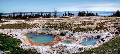 Colorful spring of Yellowstone 88, Yellowstone, Wyoming, USA