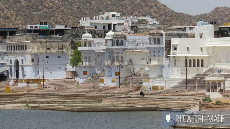 Pushkar India (7)