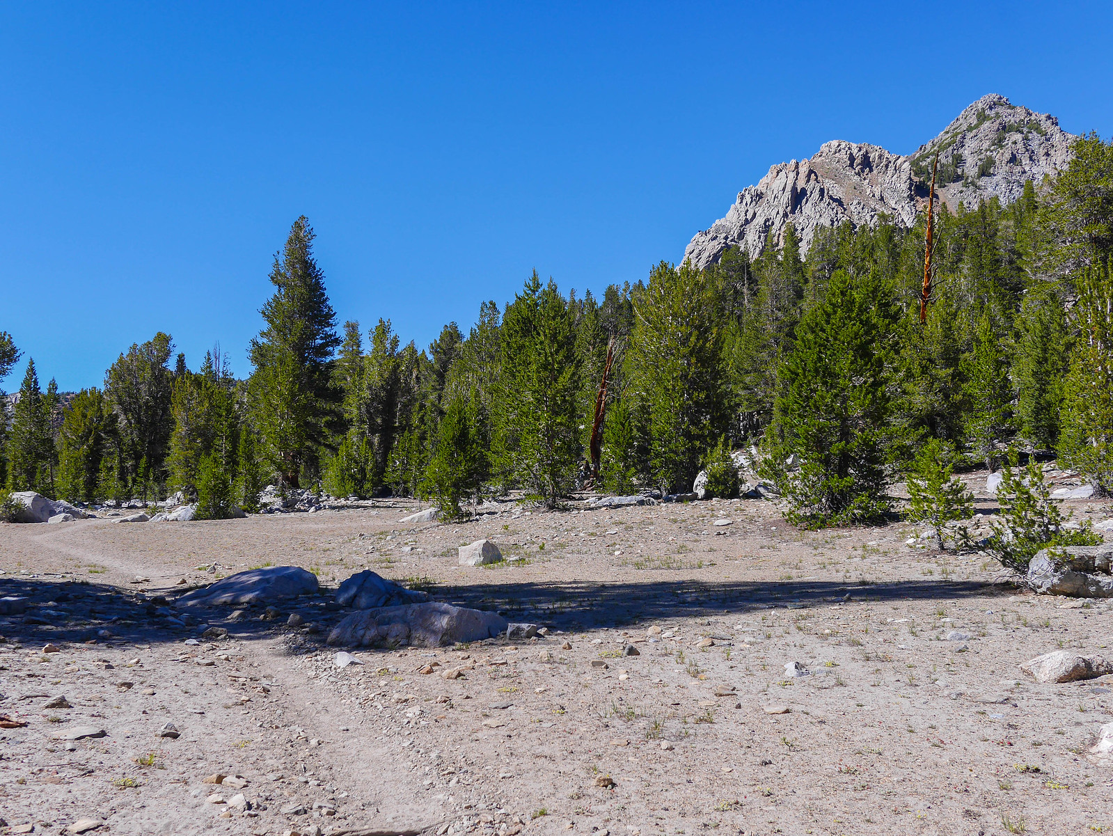 After climbing switchbacks for 900 feet, the flat plateau is a welcome respite