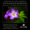 SpringintheGardenPhotographyWorkshopbyJimCrotty