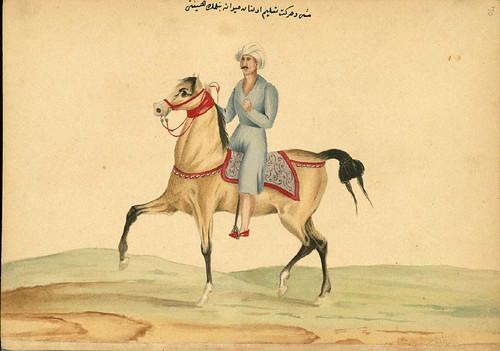 011- Entrenando a un caballo- Walters manuscrito W.661- fol 70 a-The Art Walters Museum