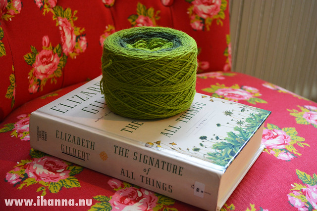 Borrowed book and bought yarn