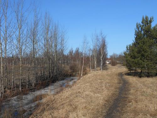 Niittynäkymä, Pohjois-Tapiola Espoo 13.3.2014