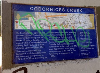 Codornices Creek is here!