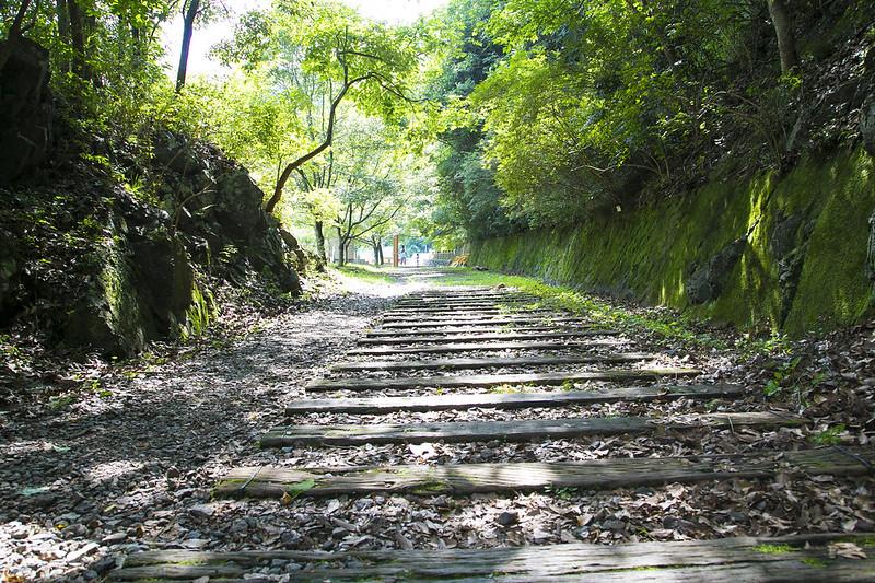武庫川渓谷廃線ハイキング(生瀬ー武田尾)625