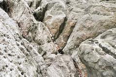 Thin layer of interbedded granite