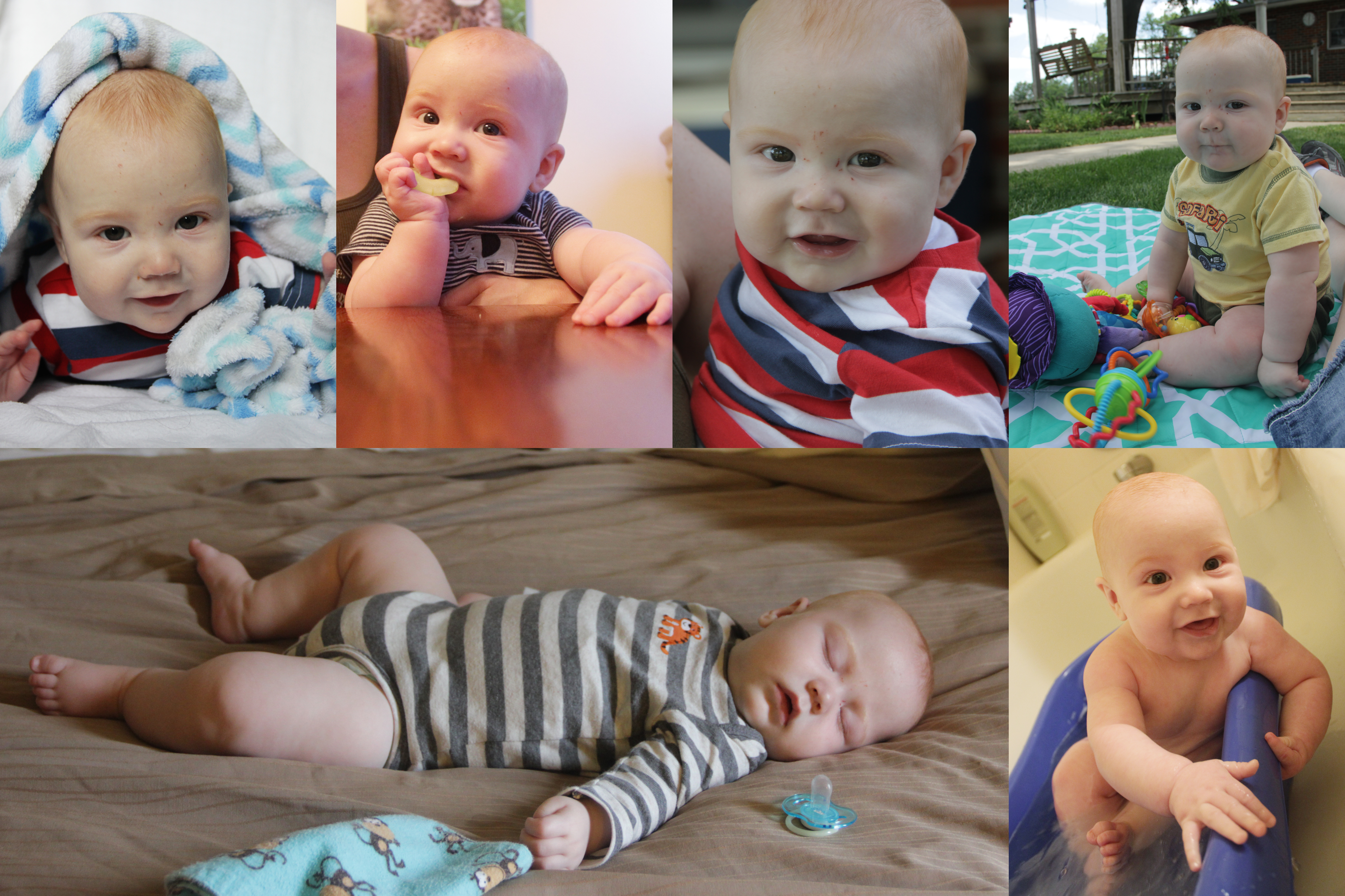 Ryder-6months-collage