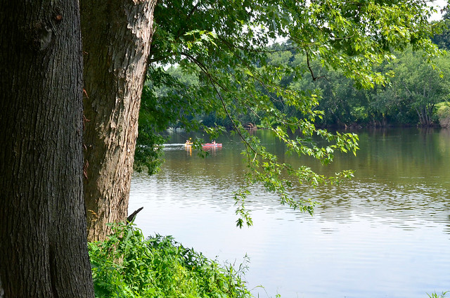 Folks out enjoying a paddle on the river at James River State Park