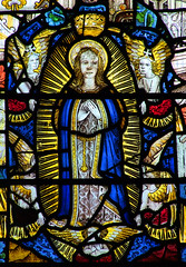 XV: Assumption of the Blessed Virgin: Mary is assumed bodily into heaven.
