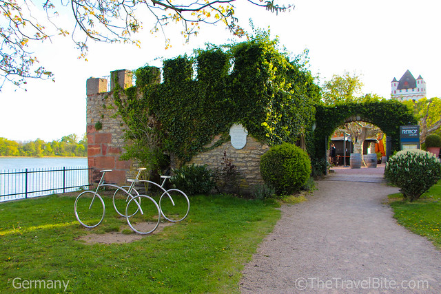 Rheingau Wine Region Germany-8