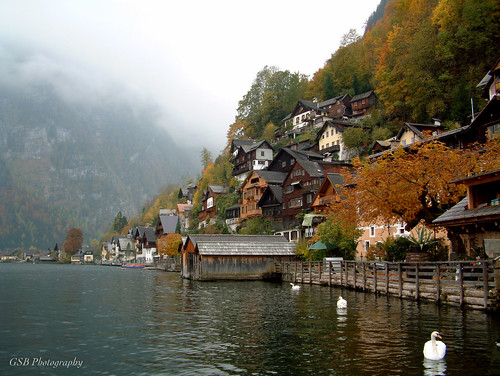hallstatt austria fall swan lakeside village lake mist mountain salzkammergut 100favorites 500v20f 1500v60f 250v10f 100v10f 200favorites 3000v120f 291
