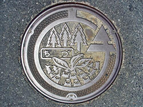 Chizu Tottori, manhole cover (鳥取県智頭町のマンホール)