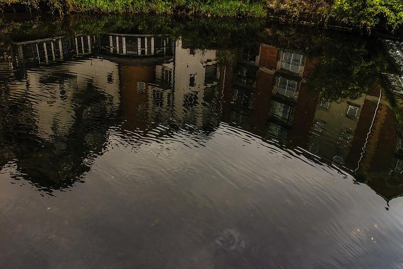 cork reflections 09