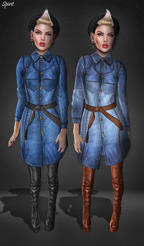 Look # 398 [Spirit Store - Rupa denim shirtsdress]