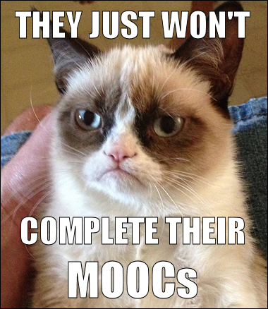 Grumpy cat thinking they just won't complete their MOOCs.