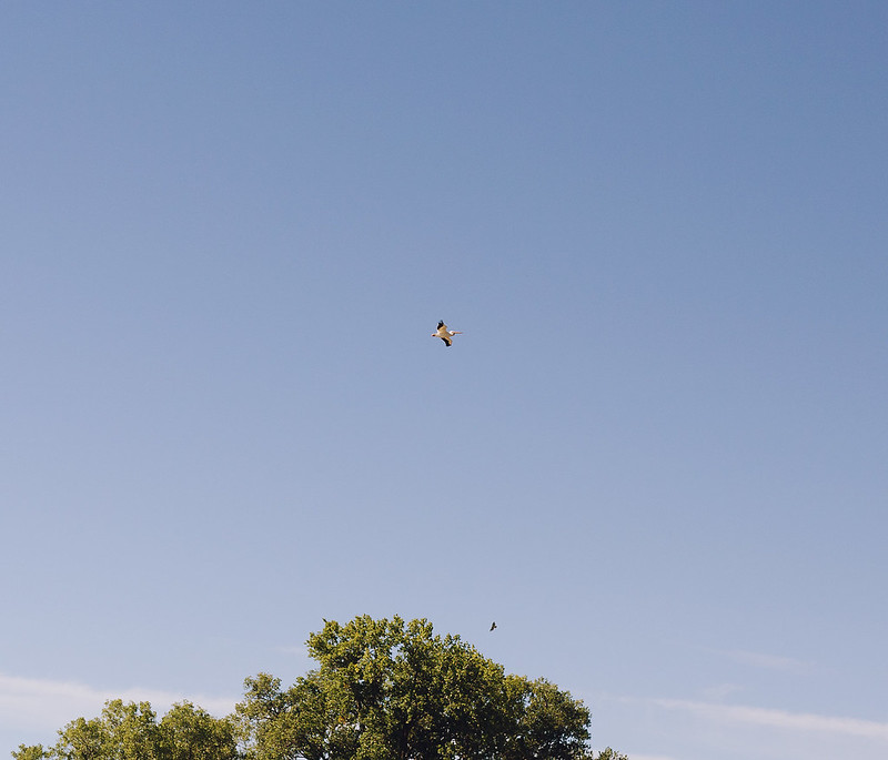Kisiel-2014-09-21-0055