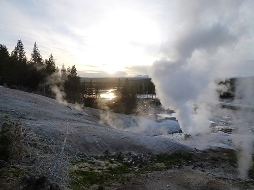 campo geotermal en Norris, Yellowstone