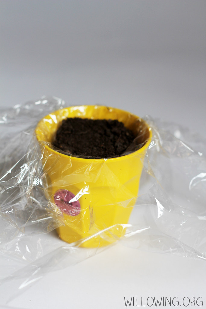 Eco-friendly Gift Idea 3