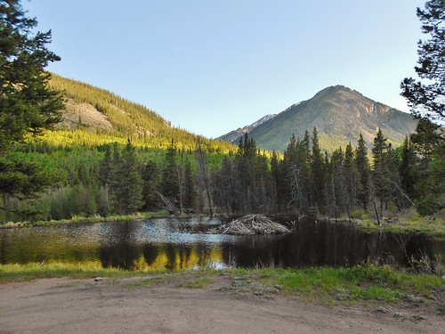 Beaver Pond Across from Sheep Gulch