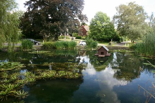 Otford duck pond