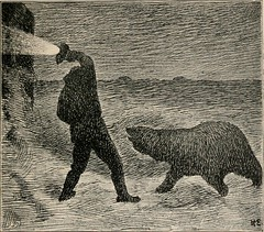 """Image from page 369 of """"Farthest north; being the record of a voyage of exploration of the ship """"Fram"""" 1893-96, and of a fifteen months' sleigh journey by Dr. Nansen and Lieut. Johansen"""" (1897)"""