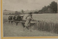 "Image from page 20 of ""Panama-Pacific / Panama-California / Souvenir / 1915"" (1915)"