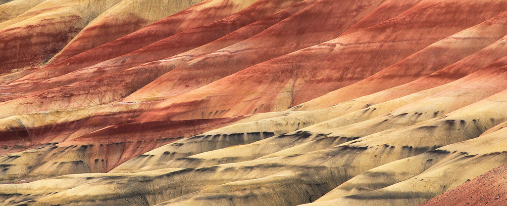Painted Hills Detail