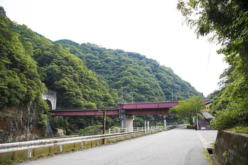 武庫川渓谷廃線ハイキング(生瀬ー武田尾)631