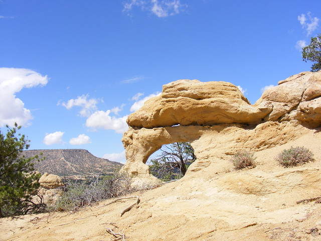 New Mexico Natural Arch NM-430