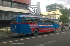Shore Buses AF213