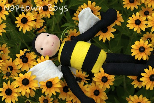 """Micah, 10"""" Bumble Bee Napling"""