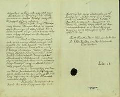 046. Zita királyné nyilatkozata II. Ottó trónigényéről