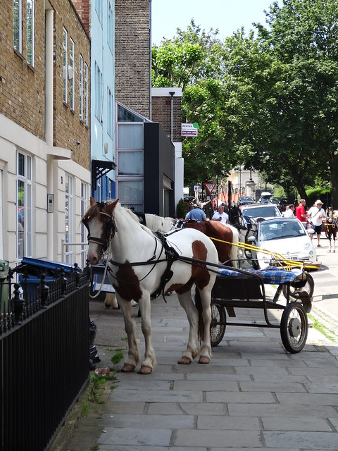 009 - Horse and Cart