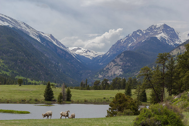 Rocky Mountain National Park by CC user trevorbexon on Flickr