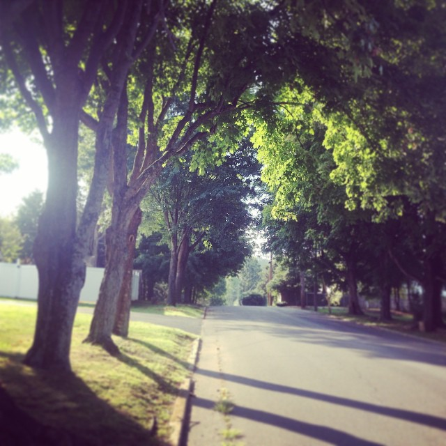 The light today was fantastic. I can feel summer creeping away. #yayfall #foundwhilerunning #taralovesmornings