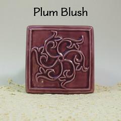 Envision_Plum