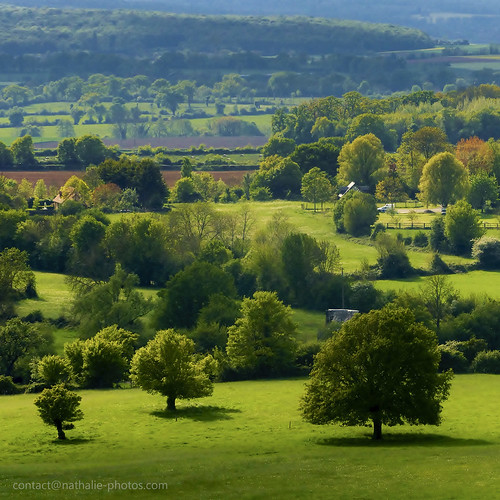 france green landscape vert normandie paysage normandy