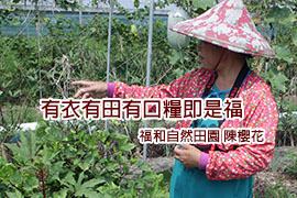 秀明自然農法- 不施肥不灑農藥火龍果箱 (林啟彬/彰化二林.方舟農園)